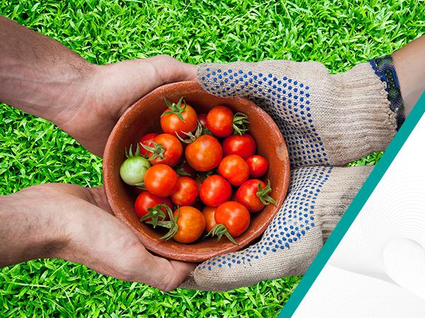 Small Farm Smart solution img